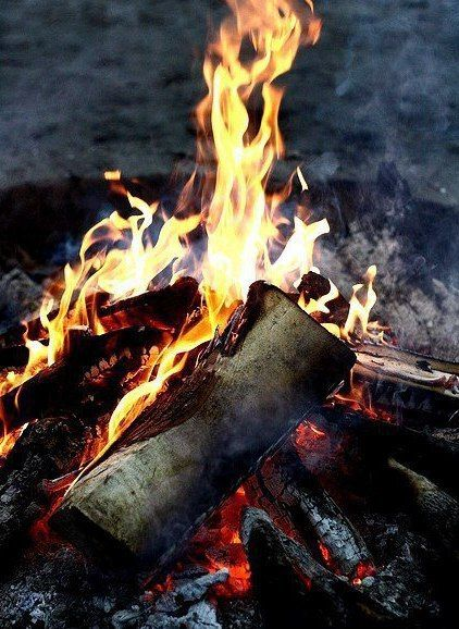Fotografii Vkontakte Campfire Campfire Games Camping Games