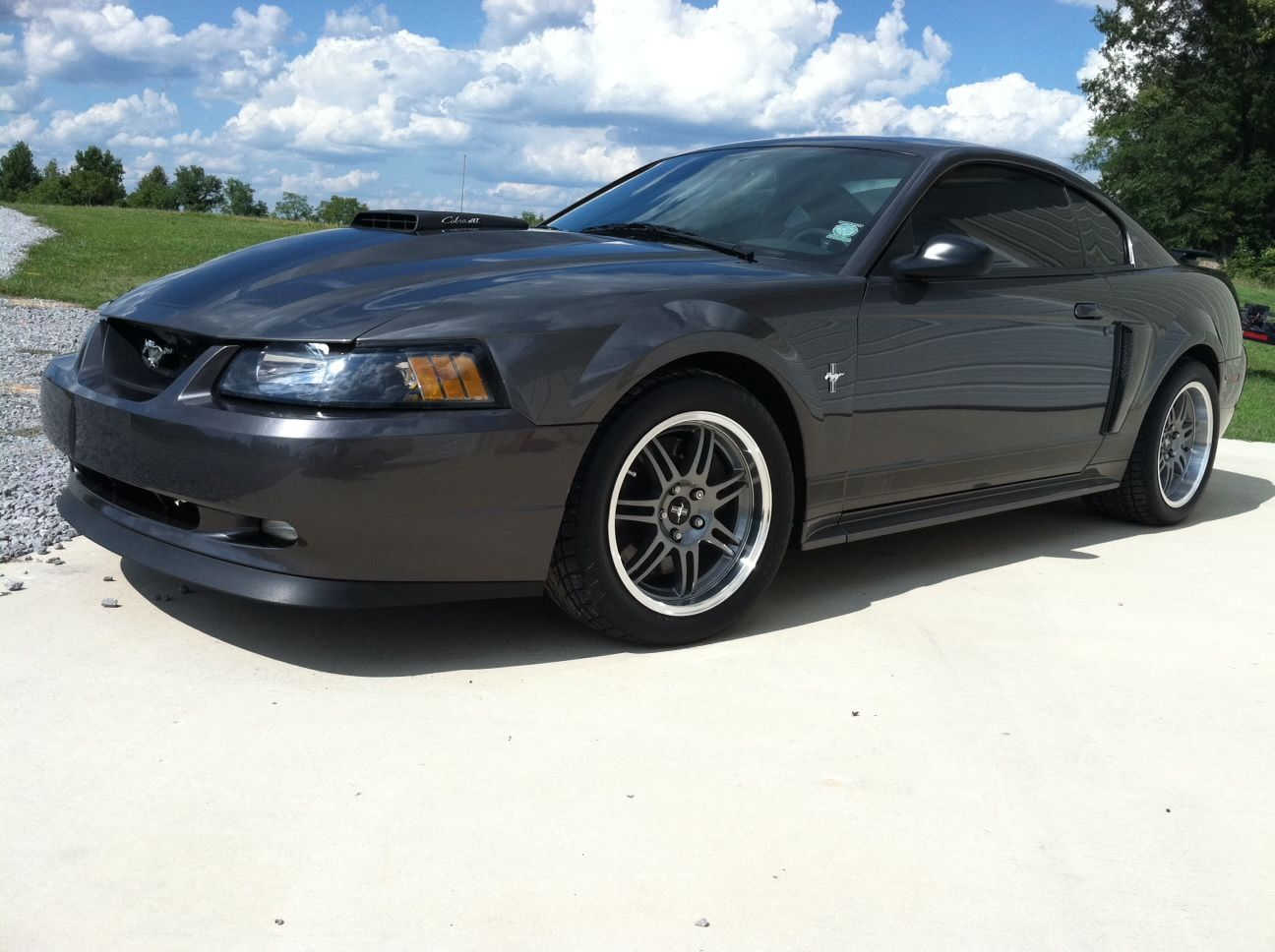 My 03 Mach 1 With 17x9 17x10 5 10th Anniversary Cobra Wheels Mach 1 Mustang Muscle Cars