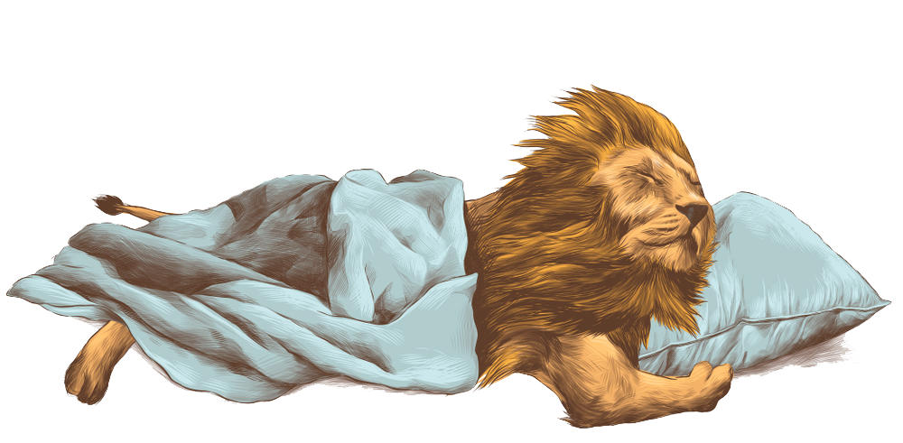 Lion Png Image With Transparent Background Paw Illustration Colorful Pictures Illustration