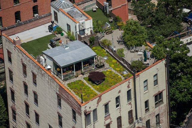 A Frontier Cabin With Yard Hidden On A Manhattan Rooftop Nyc Rooftop Green Roof Hidden House