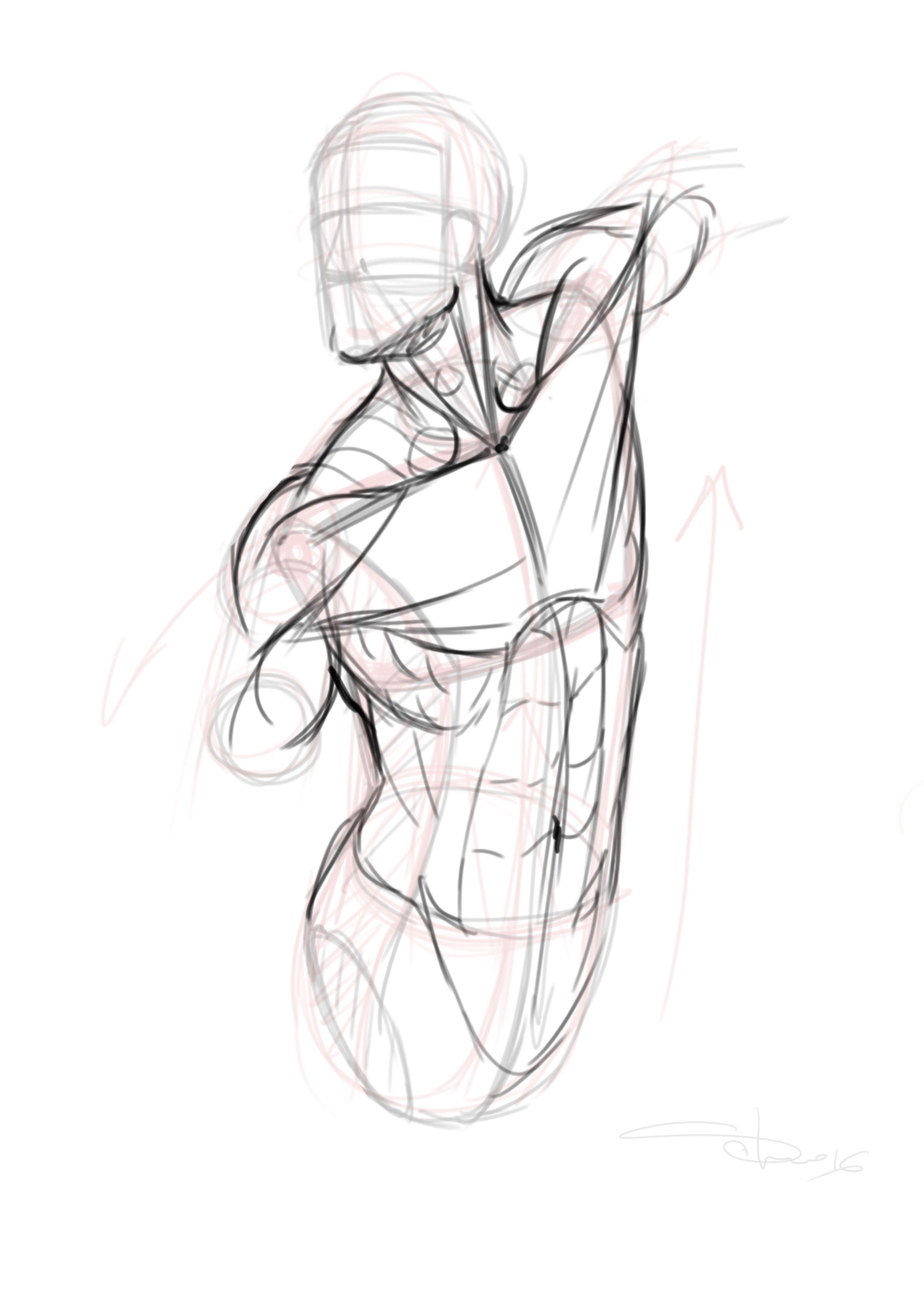 Pin de Christian Martínez en Anatomia | Pinterest | Anatomía, Dibujo ...
