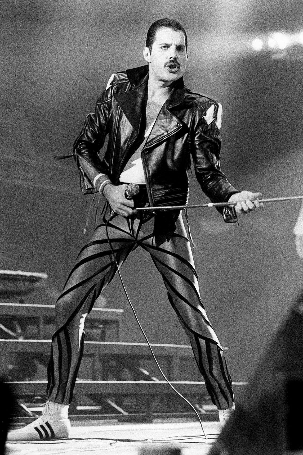 Freddie 80s Queen Freddie Mercury Freddie Mercury Death