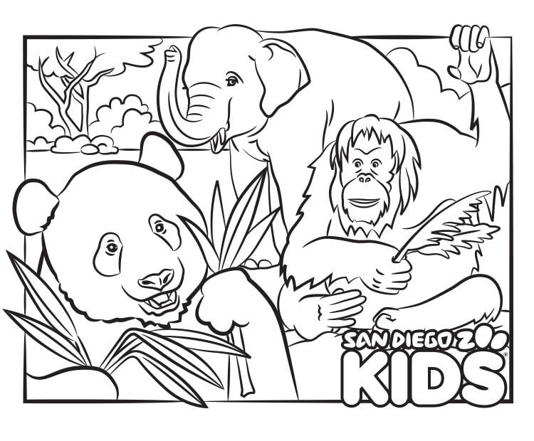 Coloring Page Panda And Friends San Diego Zoo Kids Zoo Coloring Pages Coloring Pages Elephant Coloring Page