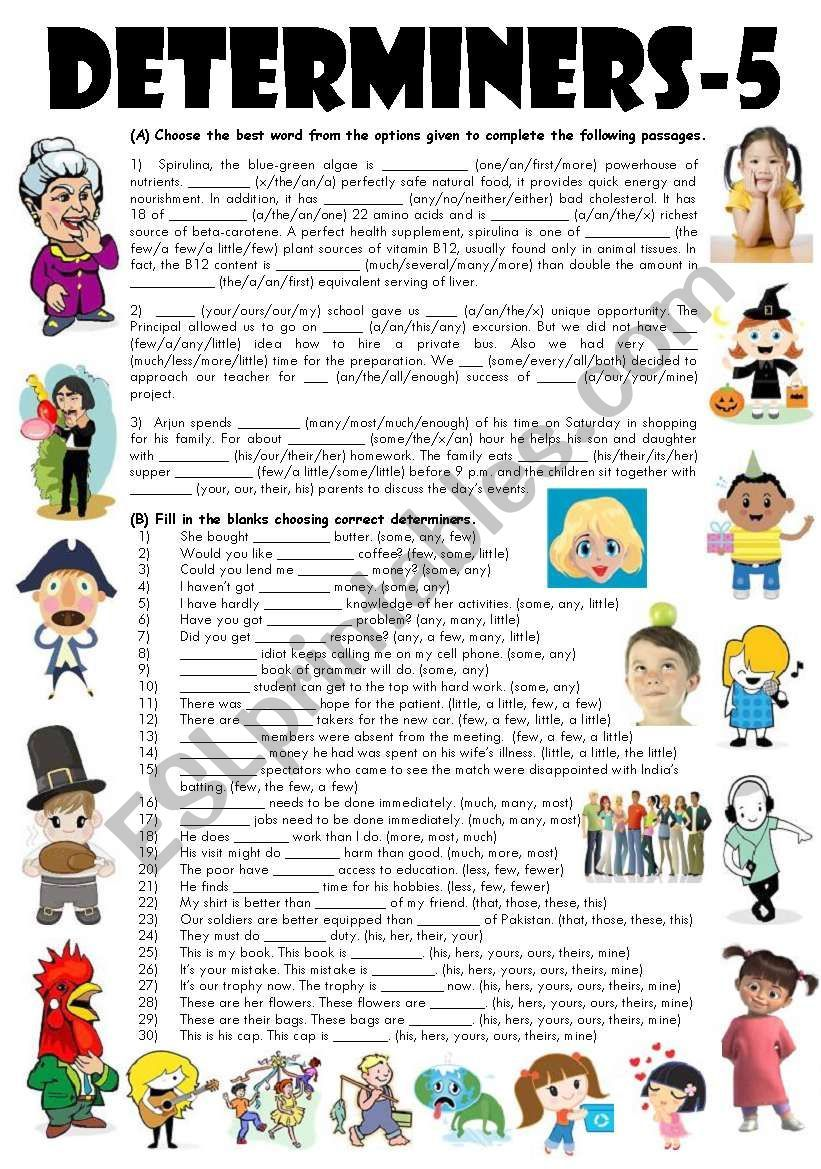 Exercise On Determiners For Class 7 - Exercise Poster [ 1169 x 821 Pixel ]