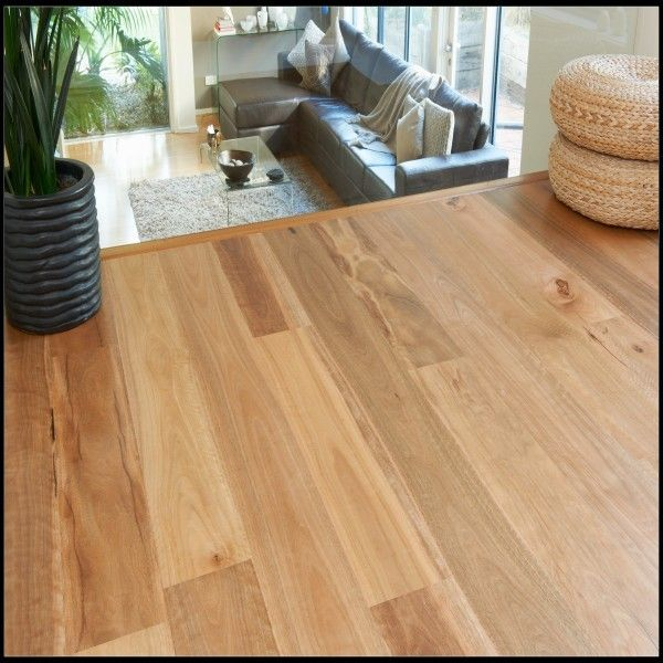 Solid Spotted Gum Flooring | Spotted Gum Flooring, Flooring, Hardwood Floors