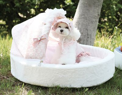 Baby Bassinet Puppy Bed   Dog beds for