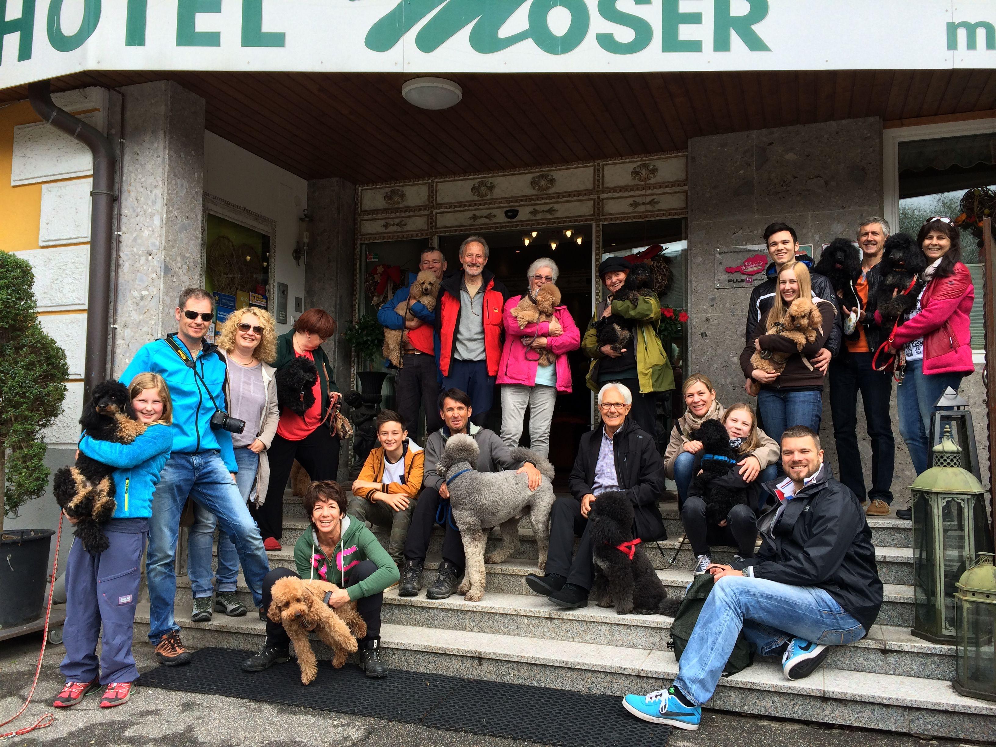Erinnerung An Den Fruhling 2015 Der Pudelclub Osterreich Zu Gast Im Hotel Moser Am Weissensee Pudel Pudelc Urlaub Mit Hund Hotel Urlaub Mit Hund Weissensee