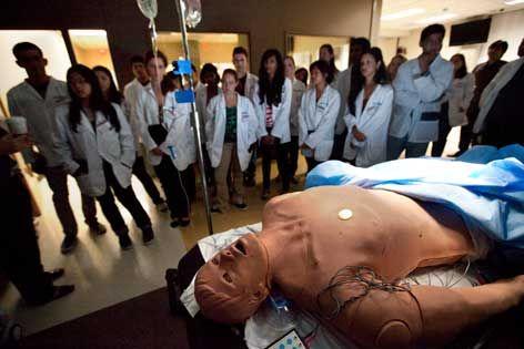Best Pre Med Programs >> Top Best Pre Med Colleges Resources Helpful Hints Med