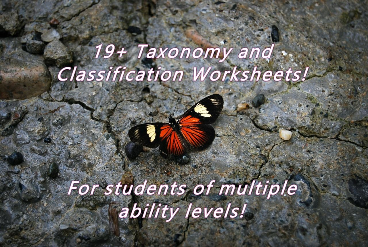 Pin By Beverly Vickrey On Teaching Resources
