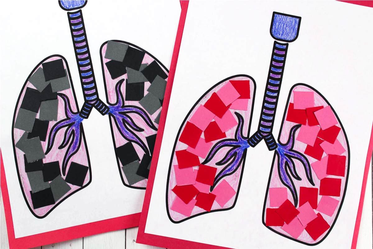 Simple Lung Craft For Preschoolers To Learn About The