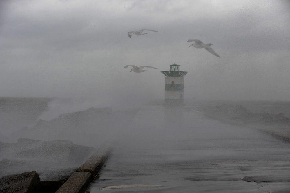 storm nederland - Google zoeken