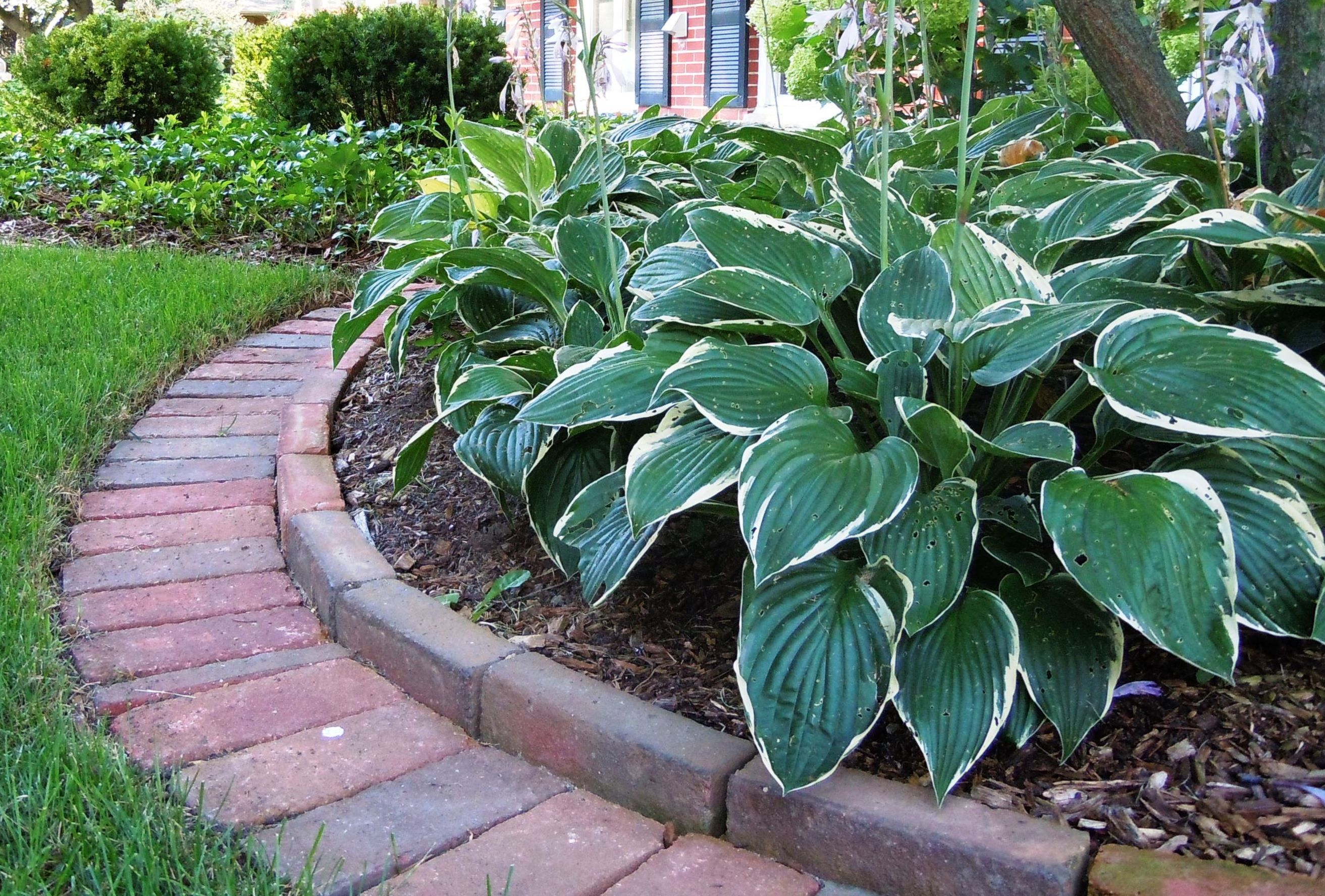 Decorative landscape edging create easy and landscaping for Decorative stone garden border