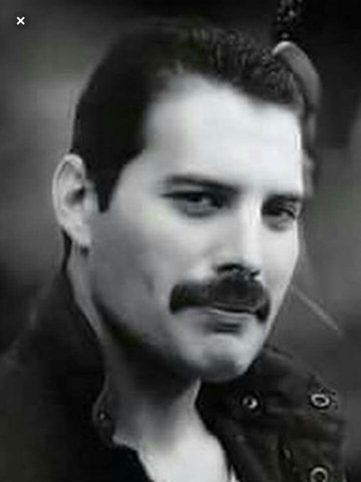 Pin by MyFairLady Lab on Freddie love...  5785cd80e32