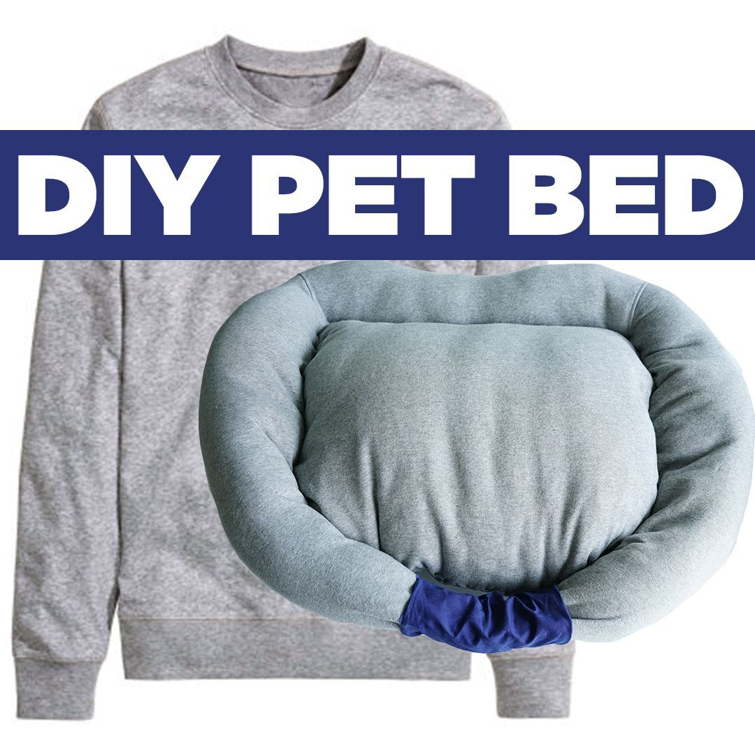Make A Cozy Pet Bed For Your Dog Or Cat