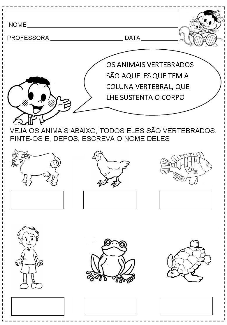 Os animais vertebrados são aqueles que possuem vértebras que formam ...
