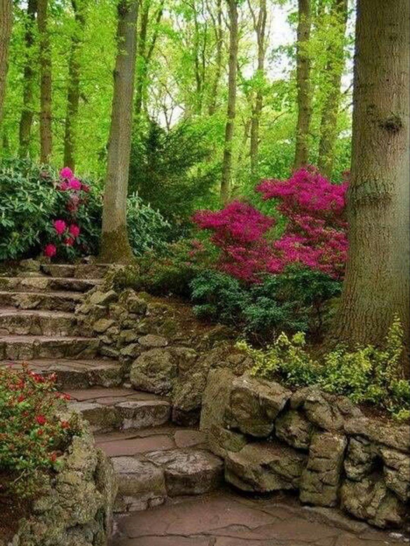 🌳 50 Enchanting Garden Paths | Pinterest | Woodland garden, Garden ...
