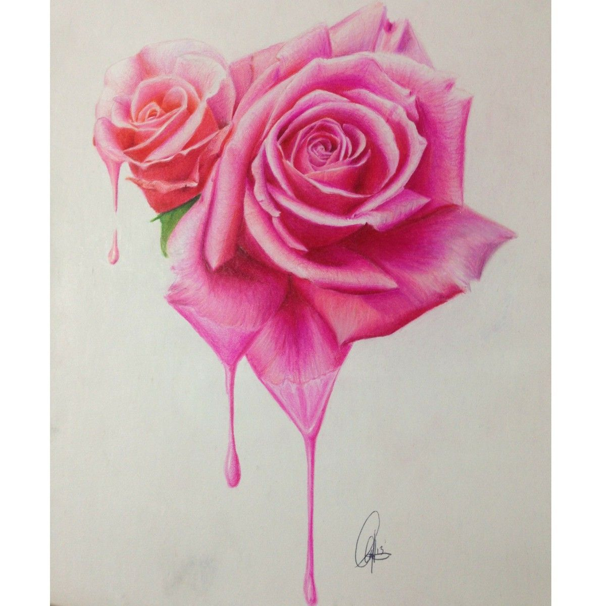 Prisma Colored Pencils Artwork Roses Crying Art