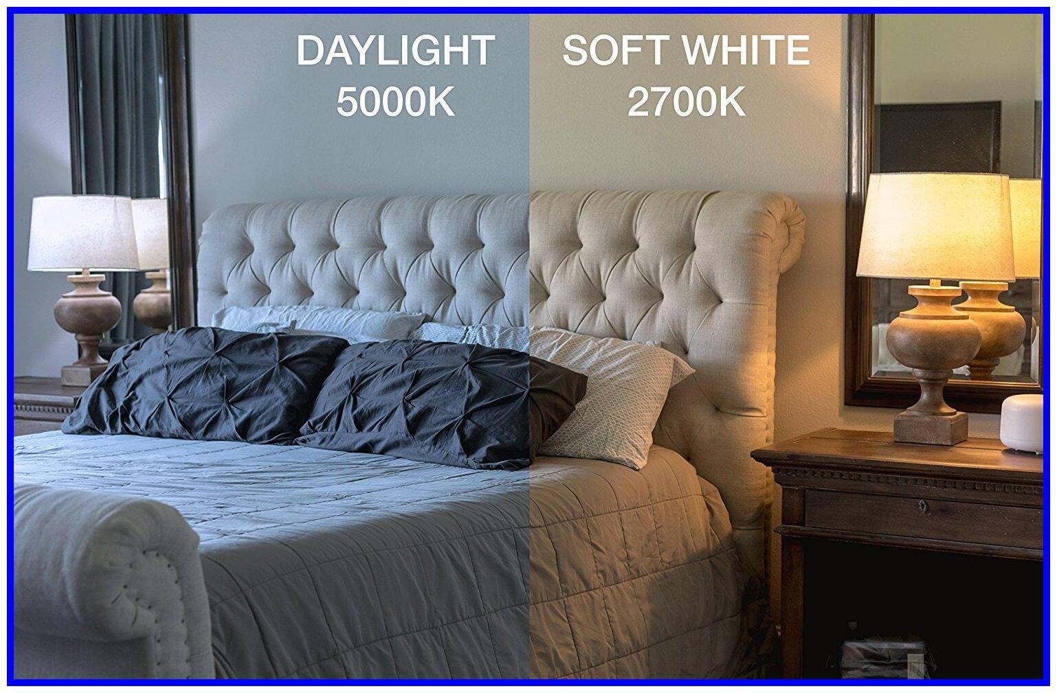 64 Reference Of Led Light Soft White Vs Daylight In 2020 Led Light Bulb Led Light Bulbs Sofa Set