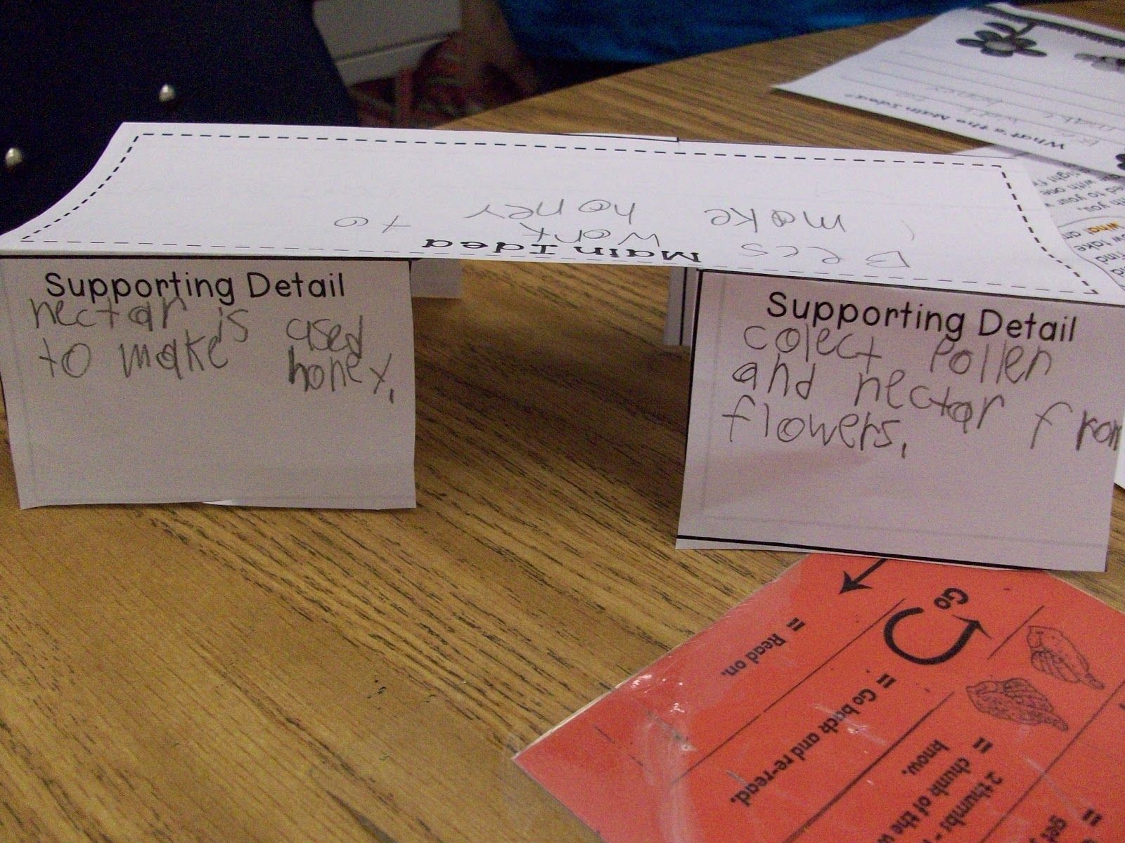 Main Idea And Supporting Details Literacy