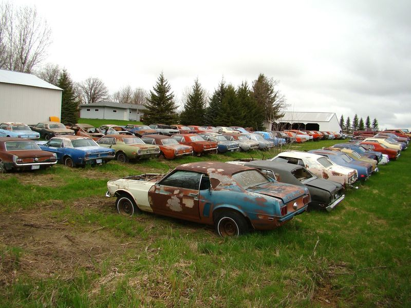 Own a Mustang Junk Yard! | RustingMuscleCars.com | Old cars ...