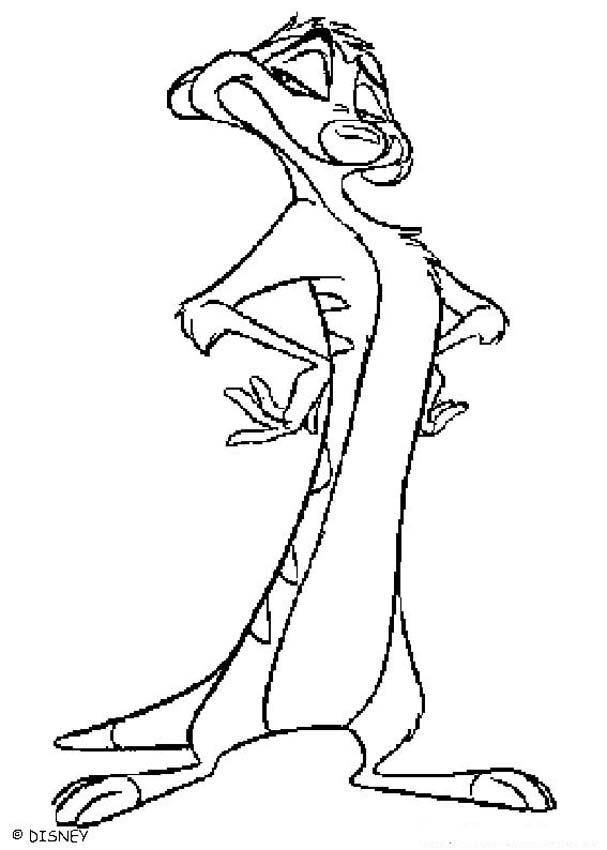 The Lion King coloring pages - Beautiful Timon | Movie Night ...