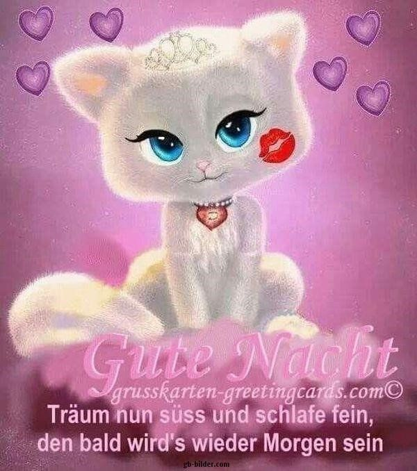 süße gute nacht bilder kostenlos   Gute nacht süße, Gute