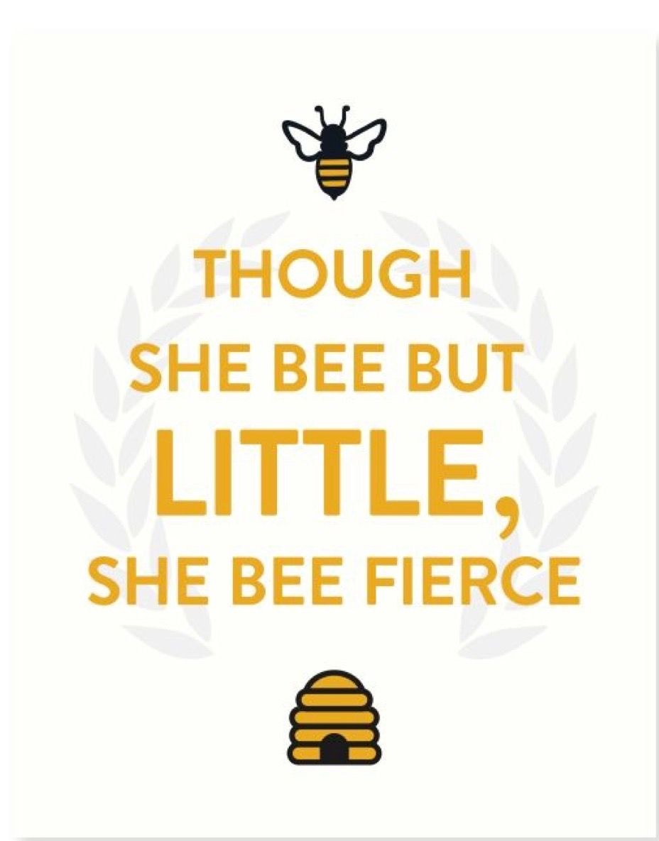 Though she bee but little, she #bee fierce. #QueenBee | Quotes Words ...