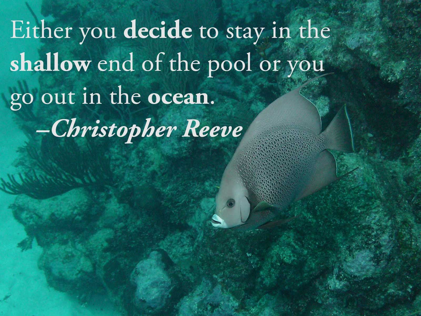 Fish aquarium quotes - Either You Decide To Stay In The Shallow End Of The Pool Or You Go Out