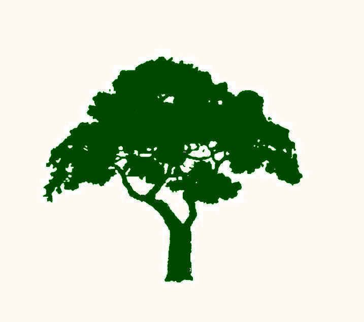 Church Logos, Tree business logo with a t...