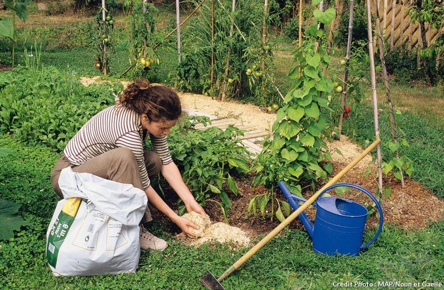 les 10 gestes essentiels pour r ussir son paillis jardin paillis potager et jardinage. Black Bedroom Furniture Sets. Home Design Ideas