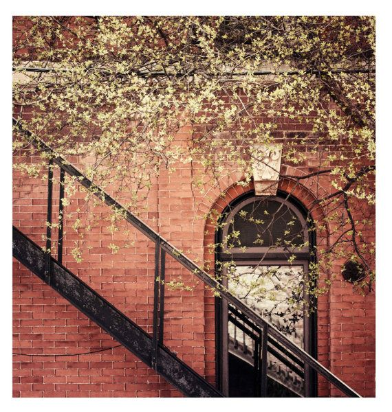 Spring Begins, City Photography, Wall Art, Fine Art Photo, Home Decor, 5x5 and larger fine art print