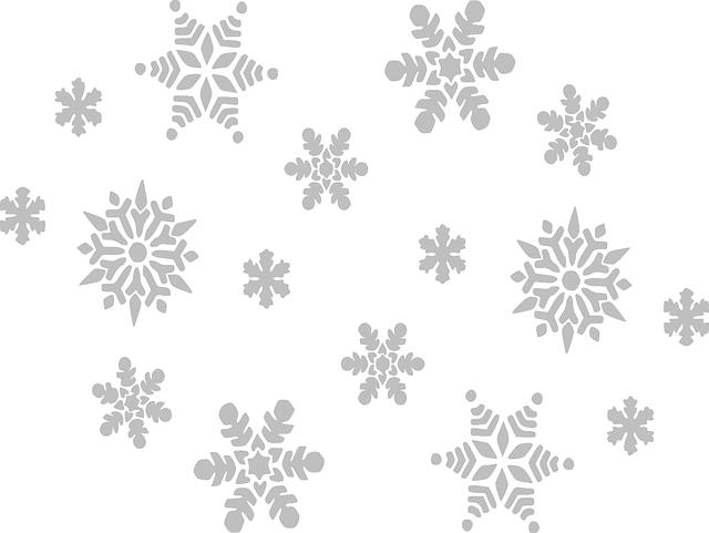 Imagen gratis en Pixabay - Copo De Nieve, Gris, Otoño, Cielo | Nieve ...