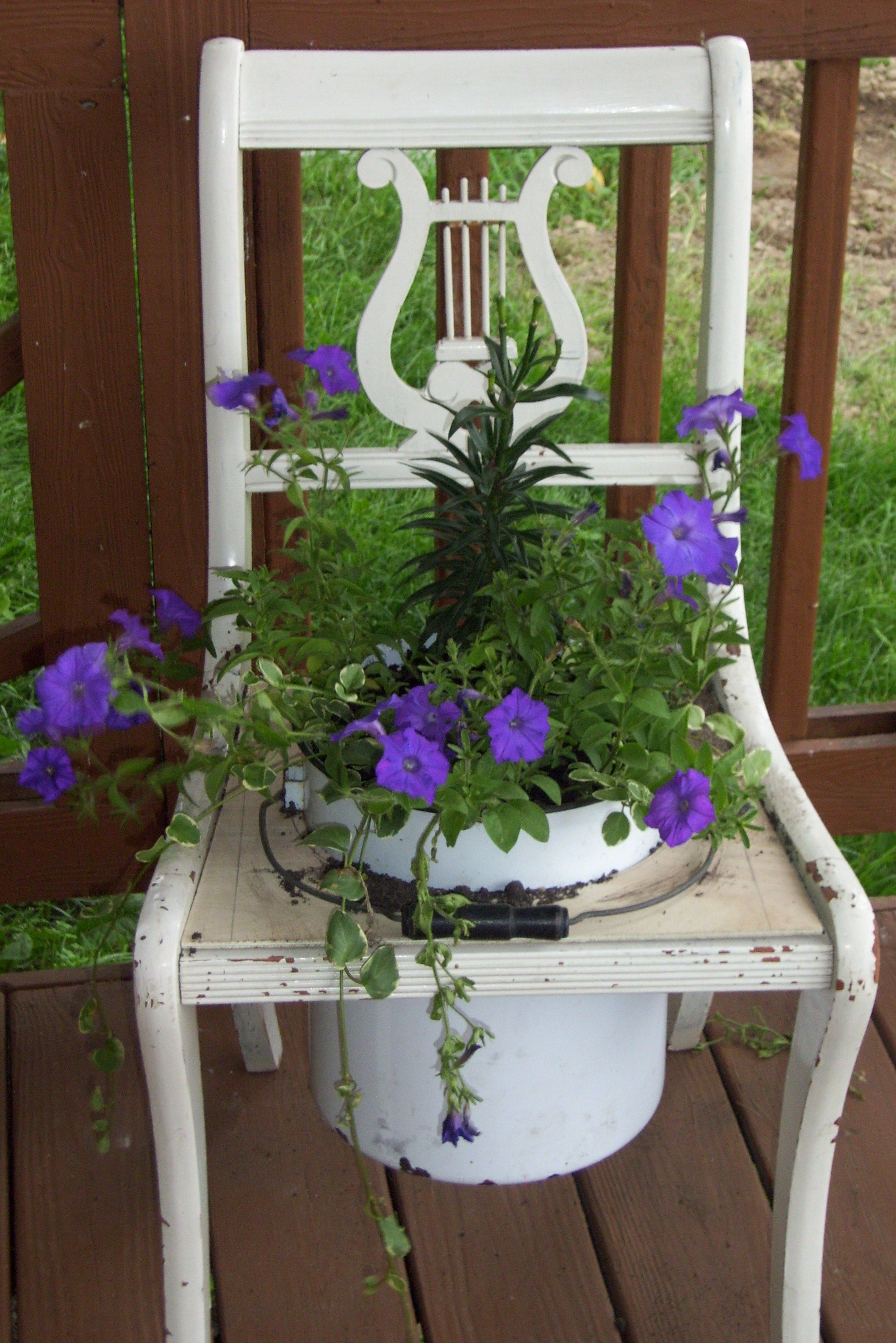 Flowers In An Old Chair And Enamel Pot Garden Chairs