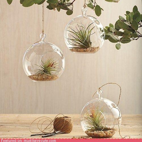 mooie glazen bloempotten/vazen