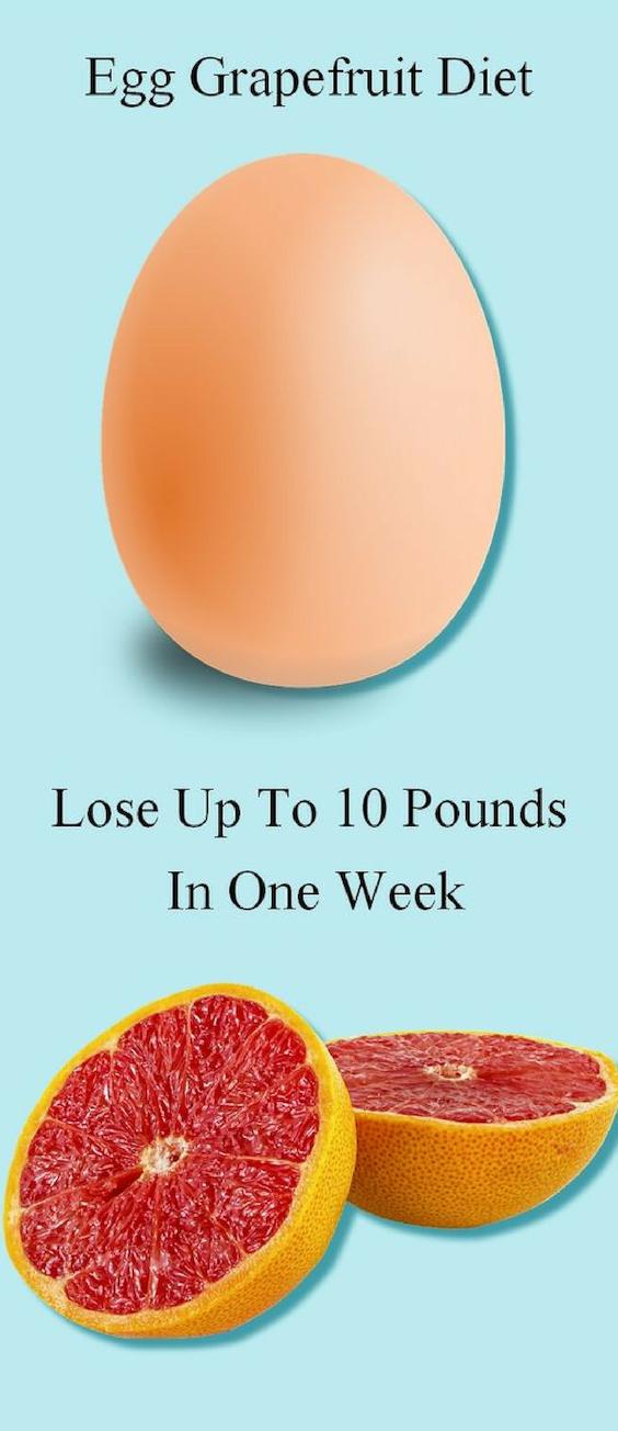 gå ner i vikt ägg