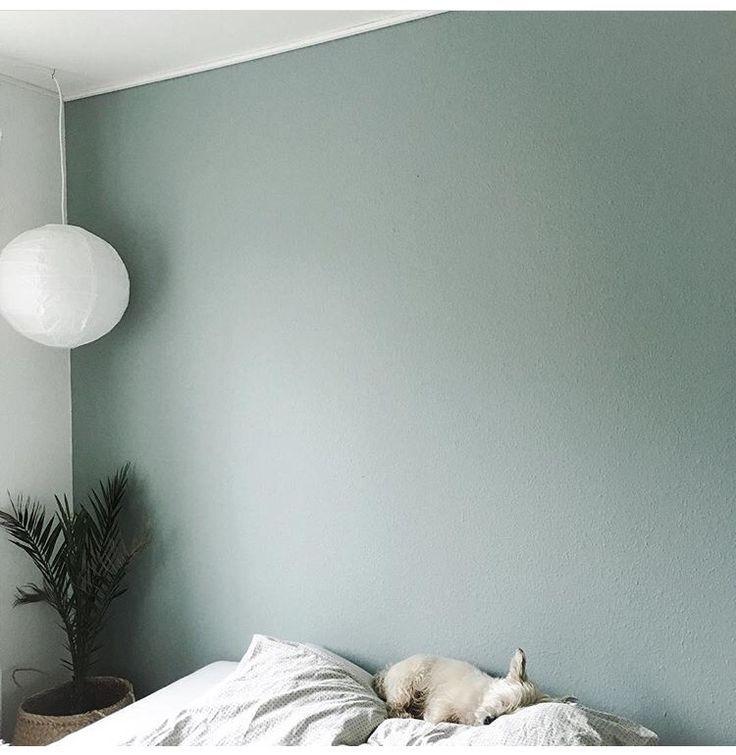 Photo of Den perfekte fargepaletten for ditt hjem i 2019