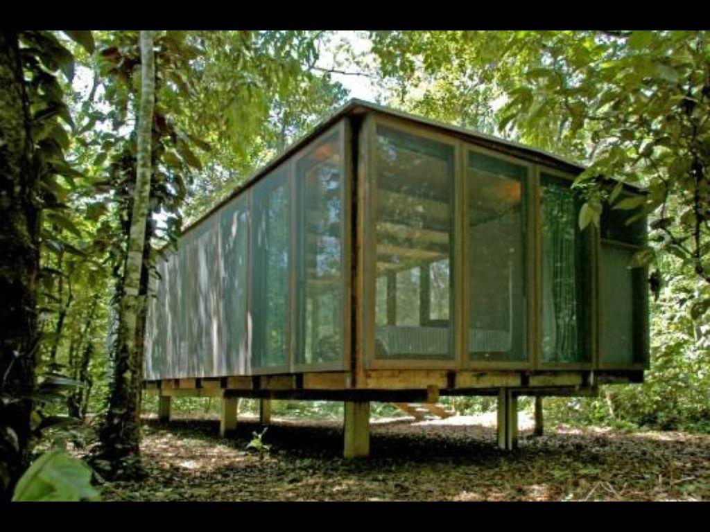 Cabane de verre en forêt | Architecture,mobilier,luminaires | Pinterest