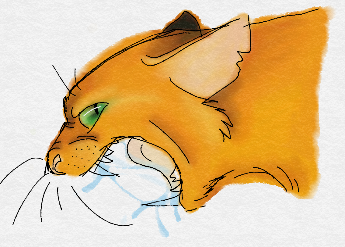 Probably one of the wisest leaders Thunderclan ever had