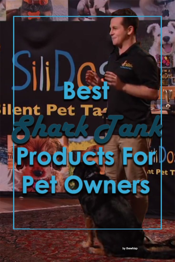 Park Art|My WordPress Blog_Cat And Dog Wine Shark Tank