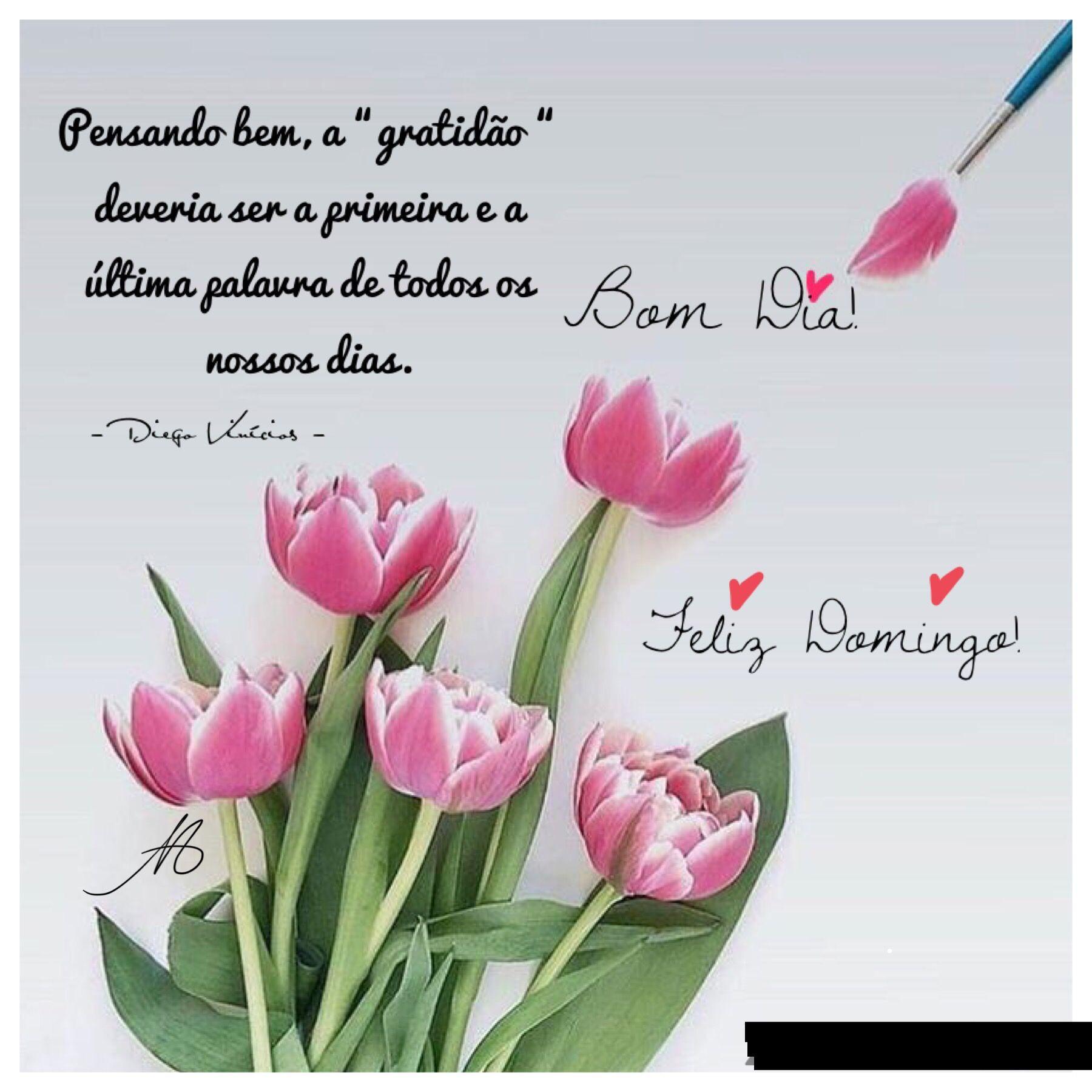 Pin De Drav S C Em Bukety Bom Dia Com Flores Frases De