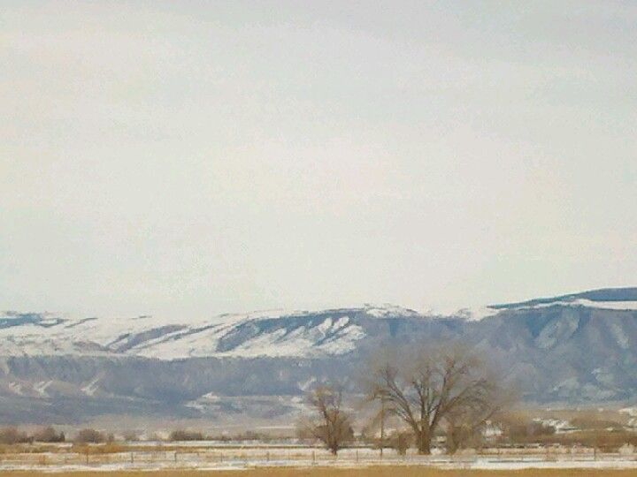 The Big Horn Mtns