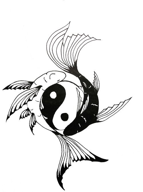 Koi yin yang fish tattoos pinterest yin yang koi for Yin yang fish
