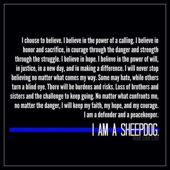 17+ Best Police Motivational Quotes