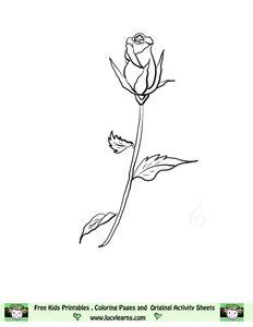 single long stemmed rose Tattoos and piercings