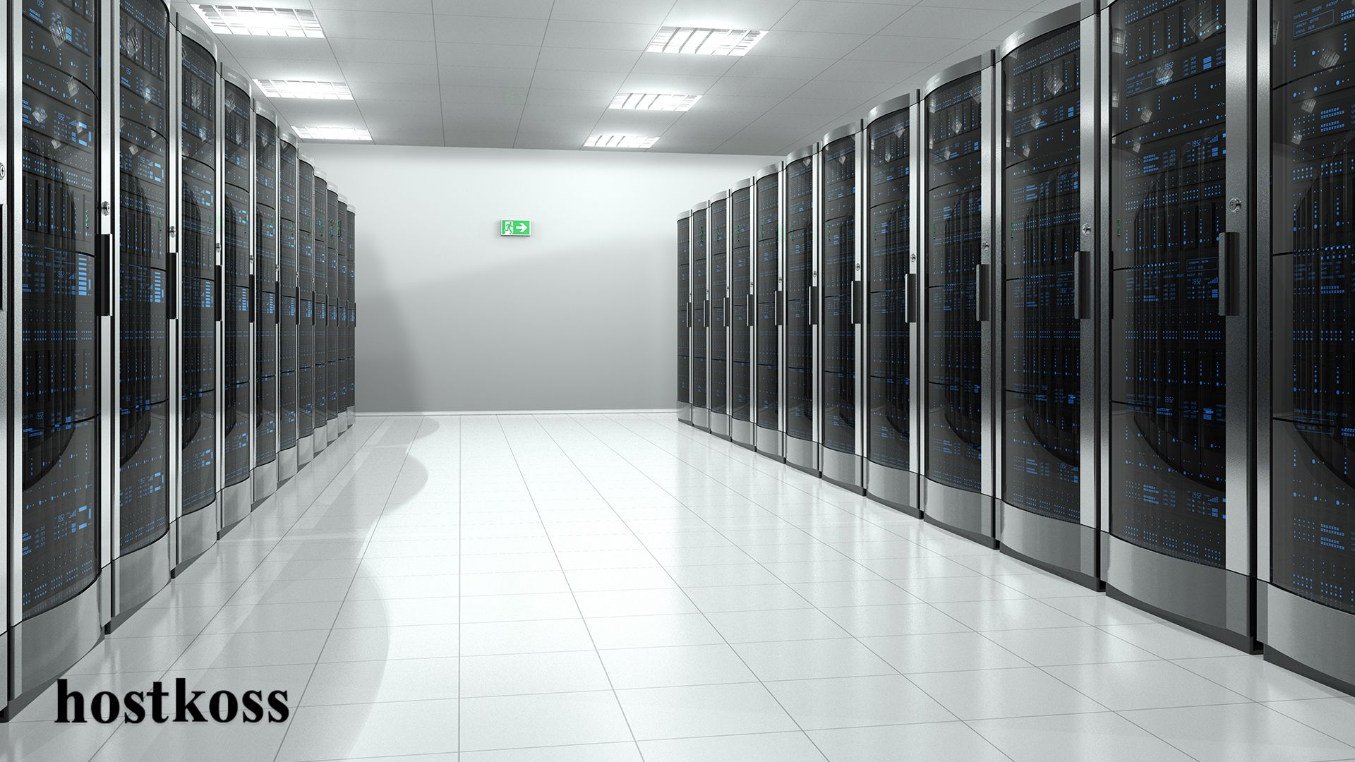 My 3d server хостинг хостинг 1 месяц бесплатно