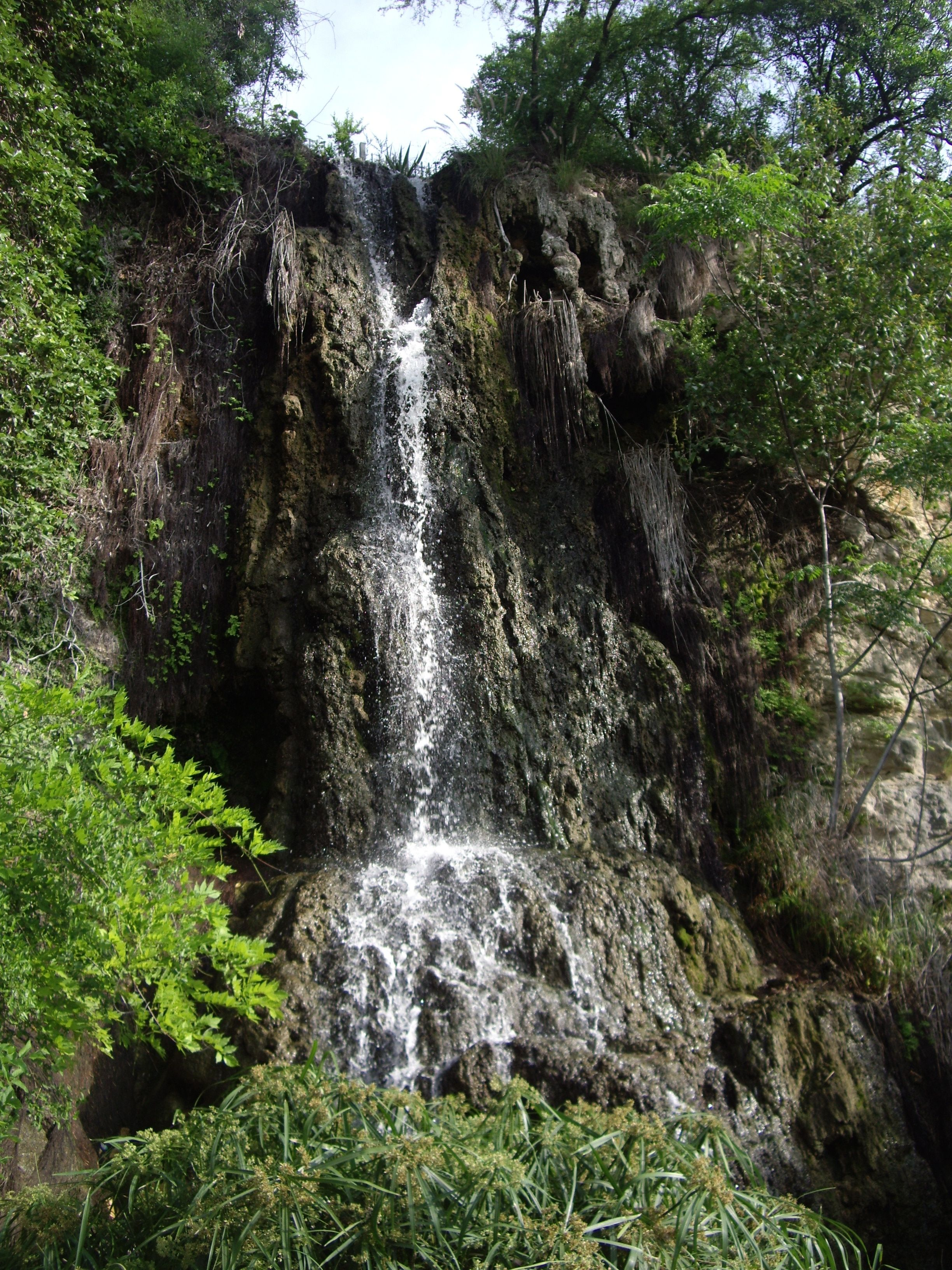 To Climb To The Top Of That Waterfall Japanese Tea