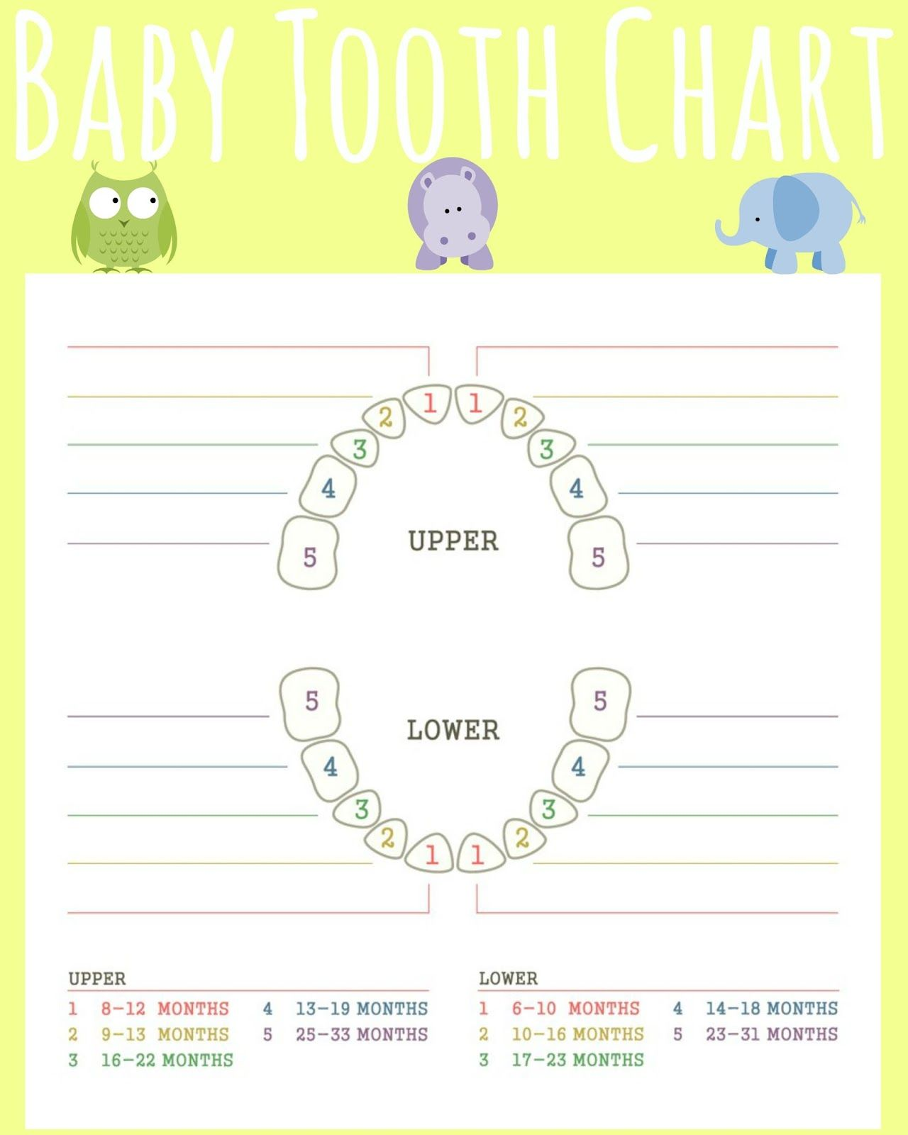 Teething isnt for babies gift basket teething chart tooth baby baby nvjuhfo Images