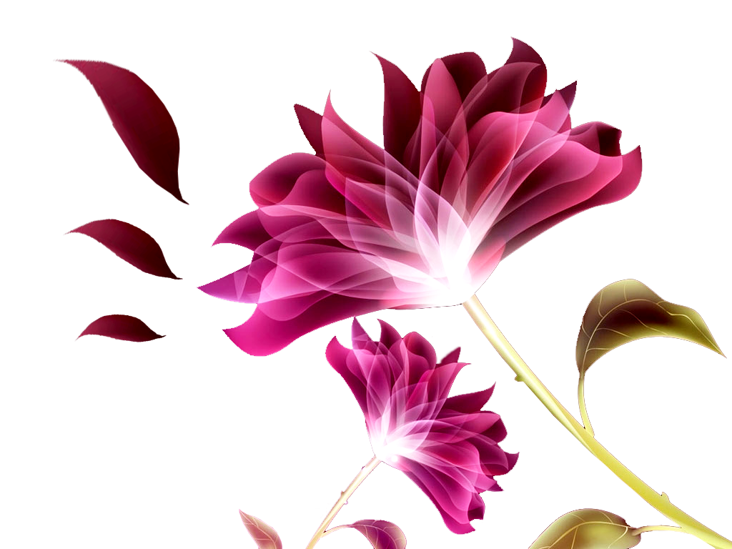 Flores Png - Yahoo Image Search Results