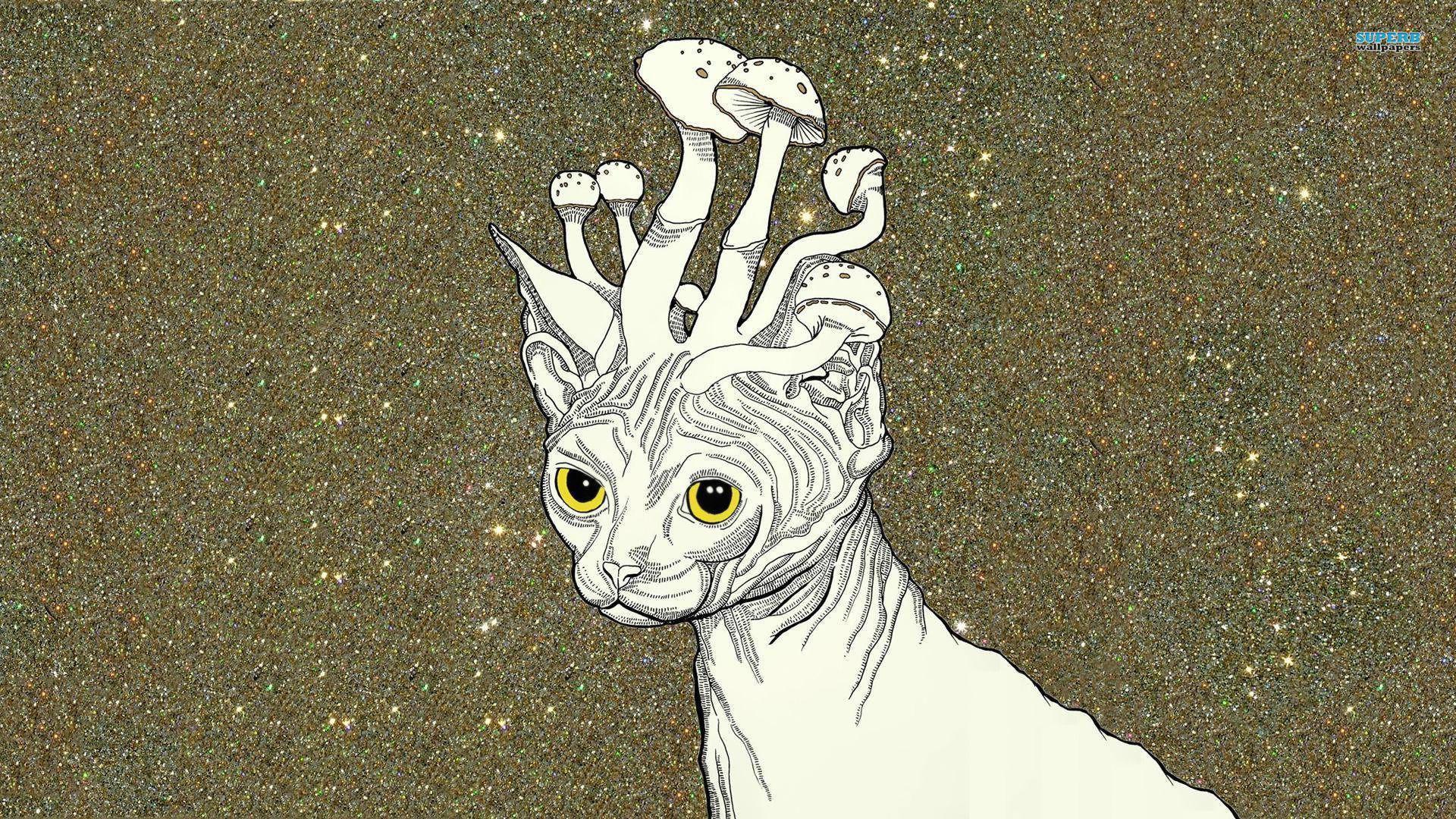 Kineko Kawaii Mushroom Cat Squishy · Uber Tiny · Online Store ...