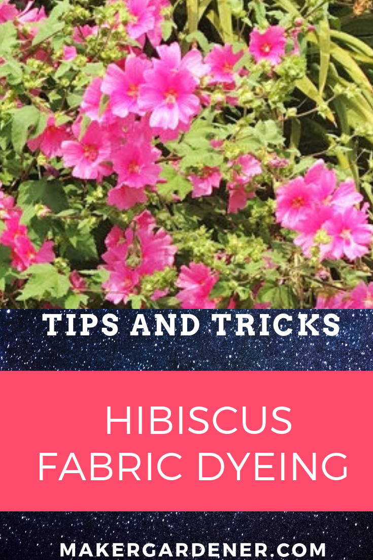 Fabric Dyeing With Hardy Hibiscus Hardy Hibiscus Hibiscus Natural Dye Fabric